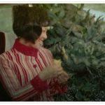ウルトラセブン 第2話「緑の恐怖」生物Xワイアール星人!あらすじ感想