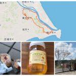 ポタリング!銚子-小見川、星の丘養蜂場、笹川のピコット